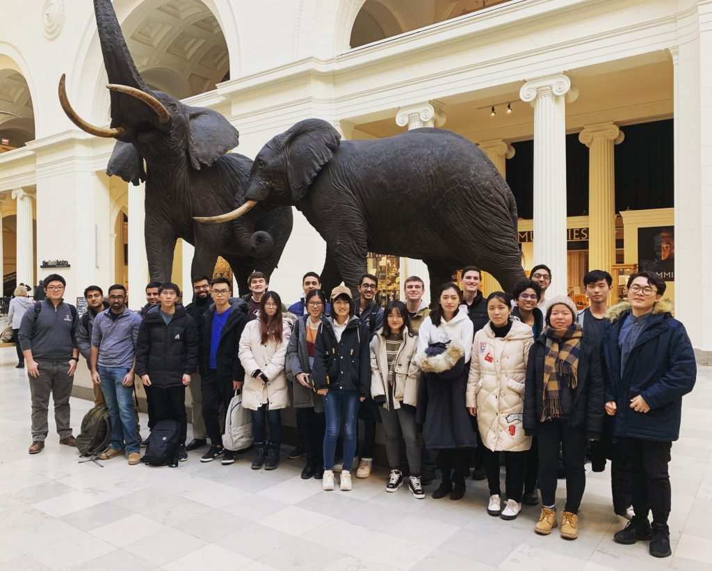 students standing by elephants
